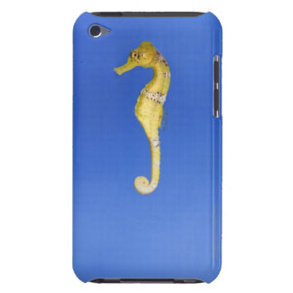 Seahorse Barely There iPod Cases