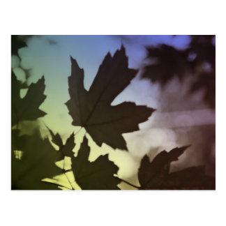 seasons (fall) postcard