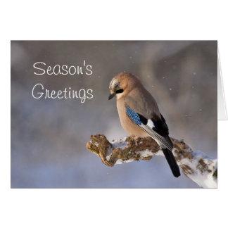 Season's Greetings Bird Holiday Christmas Card