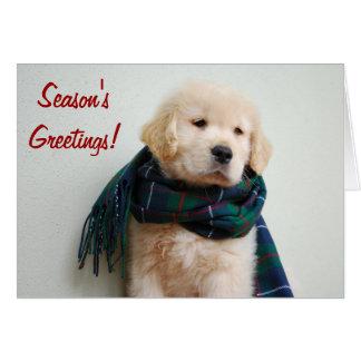Season's Greetings Holiday Card