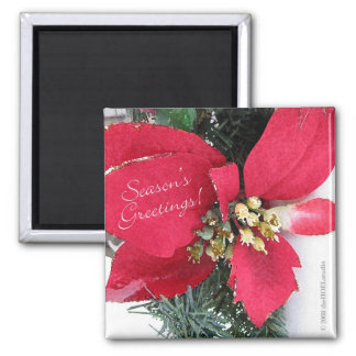 Season's Greetings Poinsettia Magnet