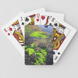 Seaweed Card Decks