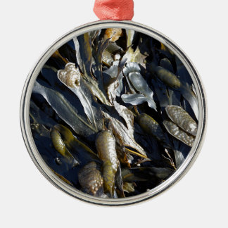 Seaweed Christmas Ornament