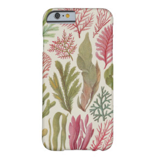 Seaweed Family Barely There iPhone 6 Case