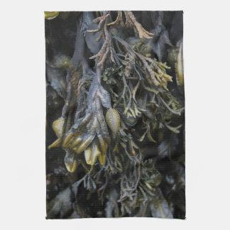Seaweed. Hand Towels