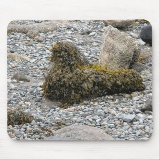 Seaweed harbor seal mouse pad