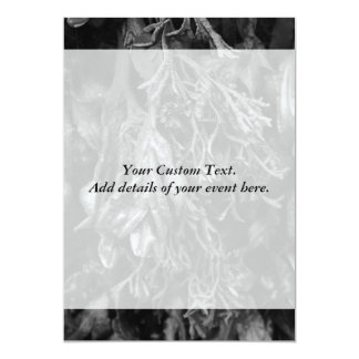 """Seaweed in Black and White. 5"""" X 7"""" Invitation Card"""