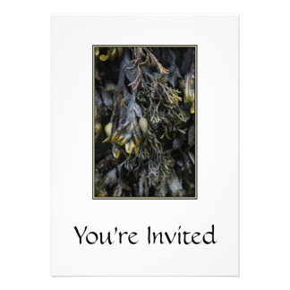 Seaweed. Personalized Invitation