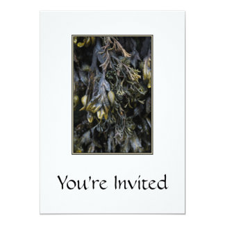 Seaweed. Personalized Invitation