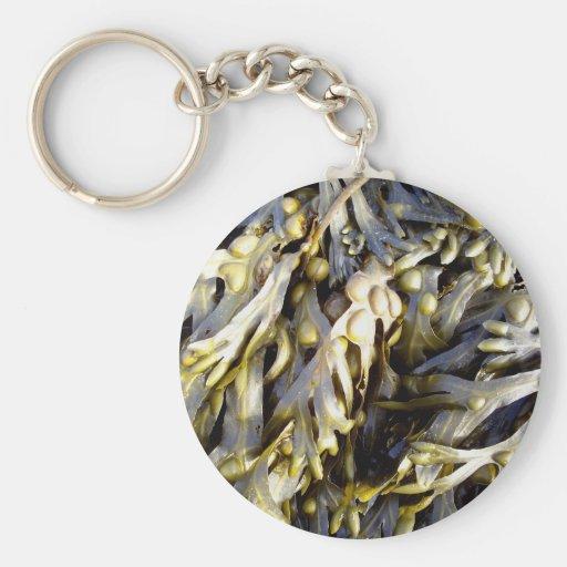 Seaweed Keychain