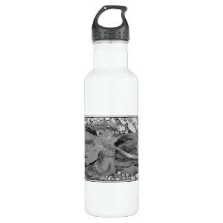 Seaweed on Pebbles. 710 Ml Water Bottle
