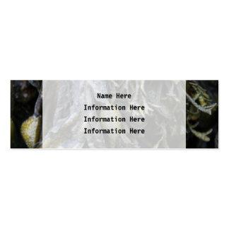 Seaweed. Pack Of Skinny Business Cards