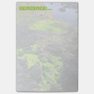 Seaweed Post-it® Notes