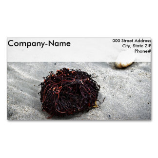 Seaweed Roots Magnetic Business Card