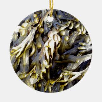 Seaweed Round Ceramic Decoration