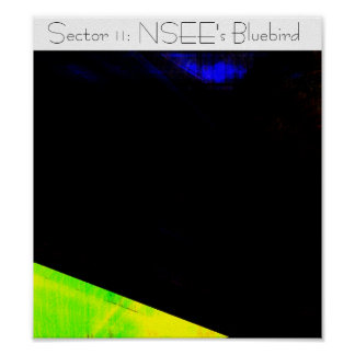 Sector 11: NSEE's Bluebird Poster