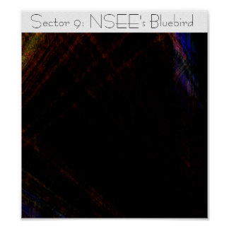 Sector 9: NSEE's Bluebird Poster