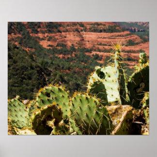 Sedona Cactus Poster