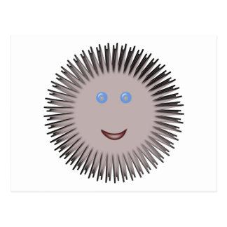 seeigel sea urchin postkarte