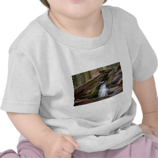 Sequoia Waterfall T-shirts