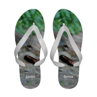 Serbia Wolf Flip Flops