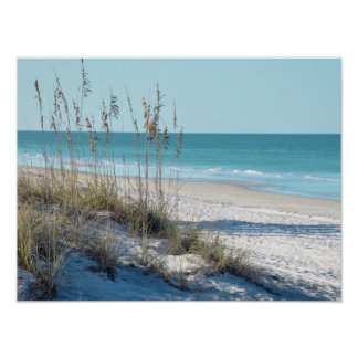 Serene Beach Sea Oats Blue Water Print