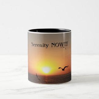 Serenity NOW!!! Two-Tone Coffee Mug