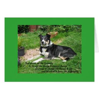 serenity prayer dog card