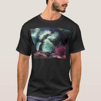 Series sea urchin T-Shirt