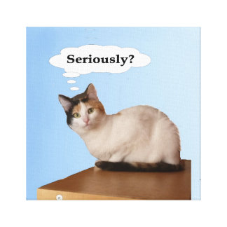Seriously? Gallery Wrap Canvas
