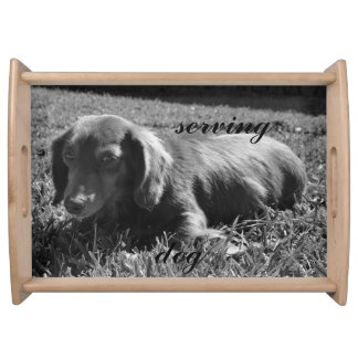 serving dachshund dog tray serving platter