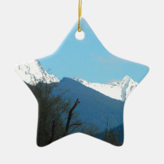 Seven Stars of Nature Christmas Ornament