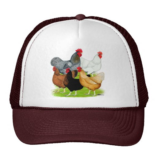 Sex-linked Chickens Quintet Mesh Hats