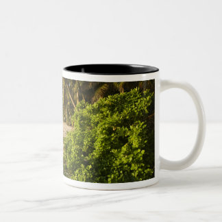 Seychelles, Mahe Island, Anse Marie-Louise Two-Tone Coffee Mug