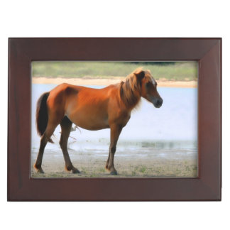Shackleford Banks Horse Keepsake Box
