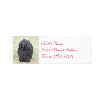 Shaggy Puli Dog Return Address Label