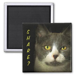 SHARE? Got Leftovers? Hugery Kitty Magnet