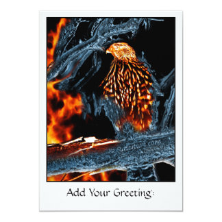 Sharp Shinned Hawk Fire and Ice. (0112) 13 Cm X 18 Cm Invitation Card