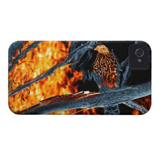 Sharp Shinned Hawk Fire and Ice. (0112) Case-Mate iPhone 4 Cases