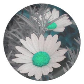 Shasta Daisies (w/Aqua) Plate