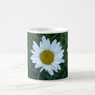 Shasta Daisy Basic White Mug