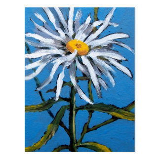 SHASTA DAISY FLOWER POSTCARD