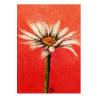Shasta Daisy III ACEO Art Trading Cards Pack Of Chubby Business Cards