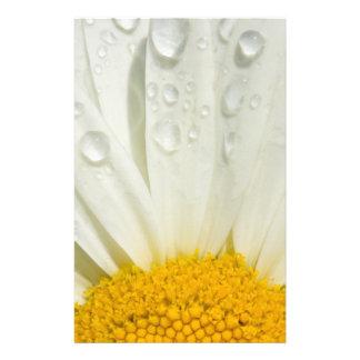 Shasta daisy stationery paper
