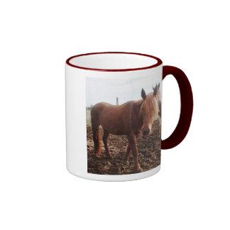 Shasta Mug