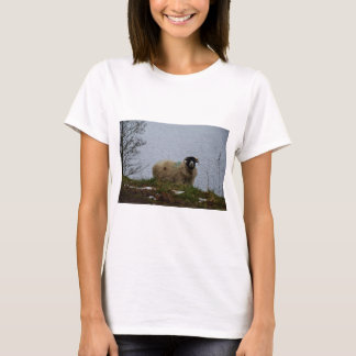 Sheep by the water T-Shirt