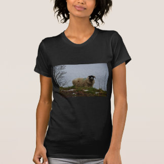Sheep by the water tee shirts