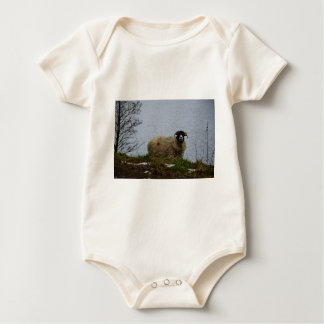 Sheep by the water baby bodysuits