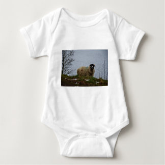 Sheep by the water shirts