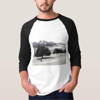 Sheep in a frosty field shirt
